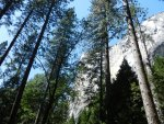 Yosemite National Park Sept 2011 475x.JPG