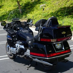 Goldwing-1.jpg